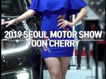 韩国美女车模 很有中国美女的味道